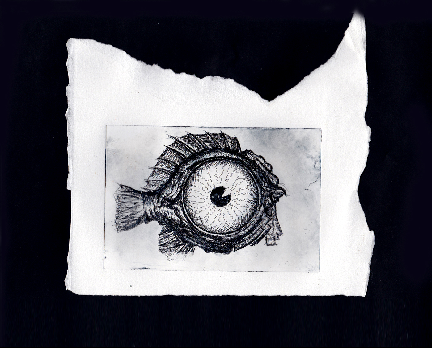 Malene Kyed Blowfish kunst art copper etching maler